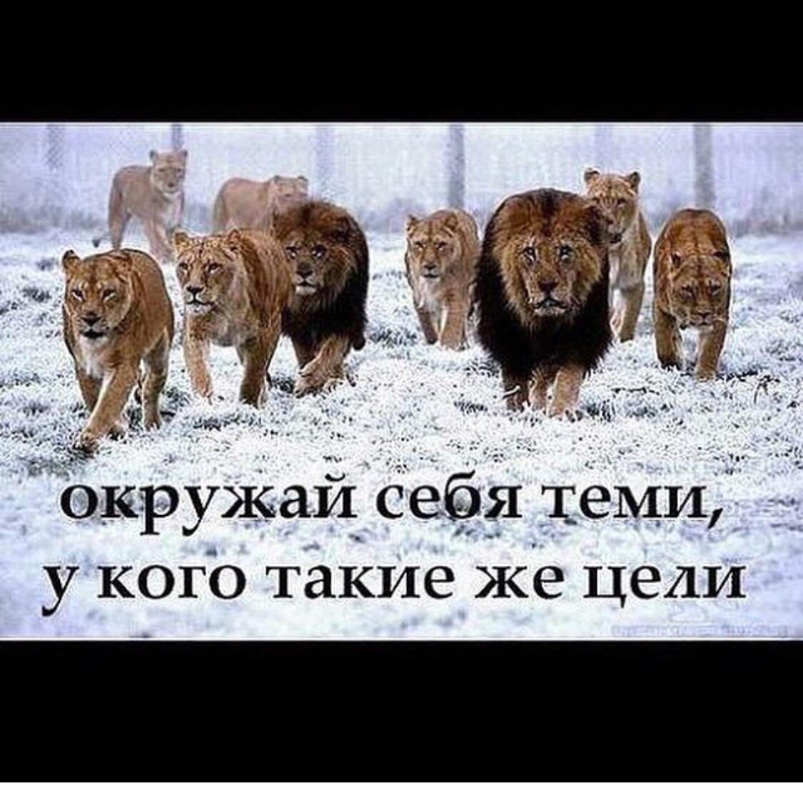 Сайты знакомств узбекистан 11 фотография